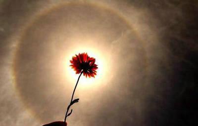 拉萨天空现日晕奇观(组图)