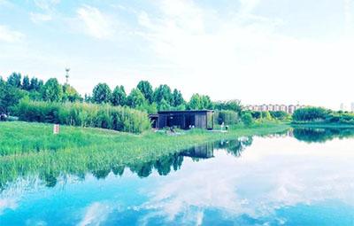 这几天的郑州,美得像宫崎骏动画里的夏天