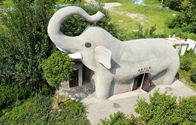 """萌翻了!郑州街头现""""巨型大象"""""""