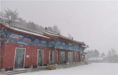 河南迎2019初雪:洛阳下雪了!
