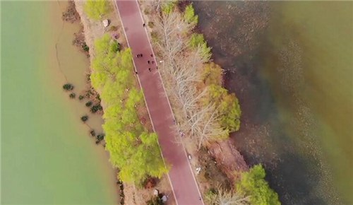 母亲河的春天有多美?来看航拍400公里黄河生态廊道