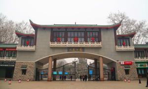 《郑州元素之生态表情》二:人民公园