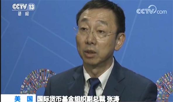 国际货币基金组织副总裁张涛.jpg