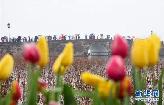 #(社会)(4)2019年春节假期全国旅游接待总人数4.15亿人次