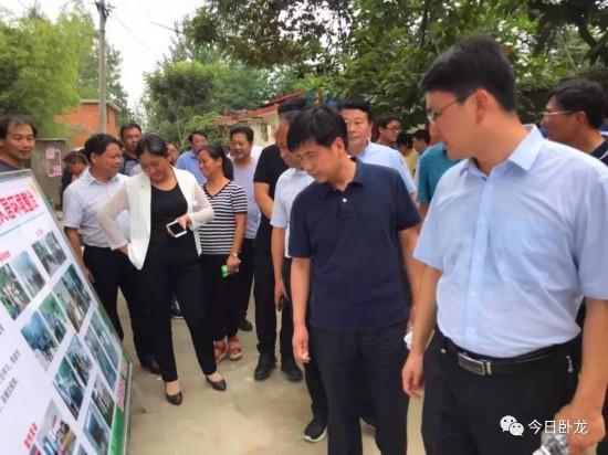 卧龙区开展乡村振兴、农村人居环境整治综合观摩活动