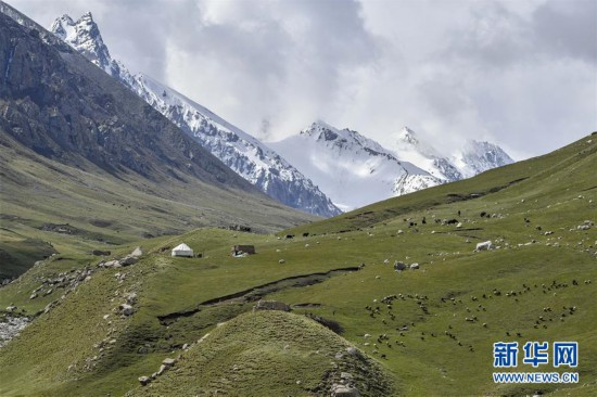 """(环境)(3)新疆塔什库尔干:""""云端牧场""""生态美"""