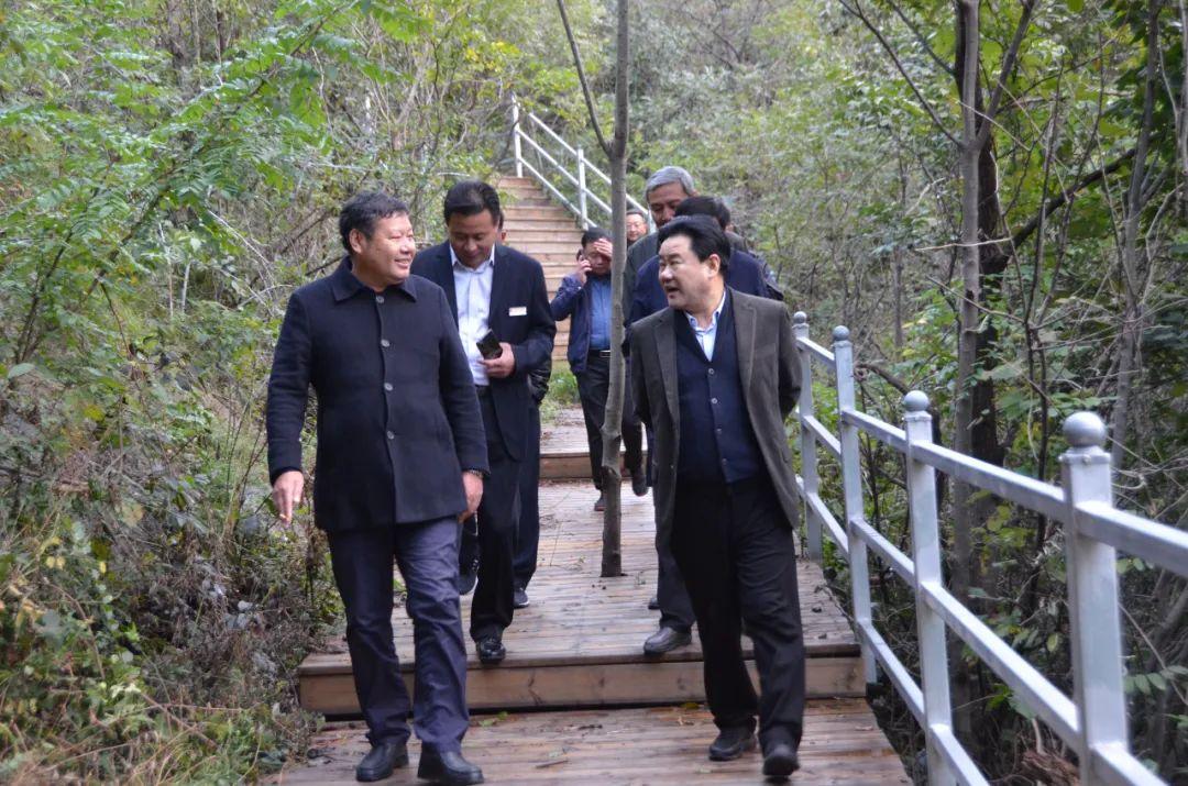 南阳市政协副主席、方城县委书记褚清黎深入七峰山生态旅游区视察工作