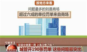 未按规定分类、乱扔堆放...上海垃圾分类第一周这些问