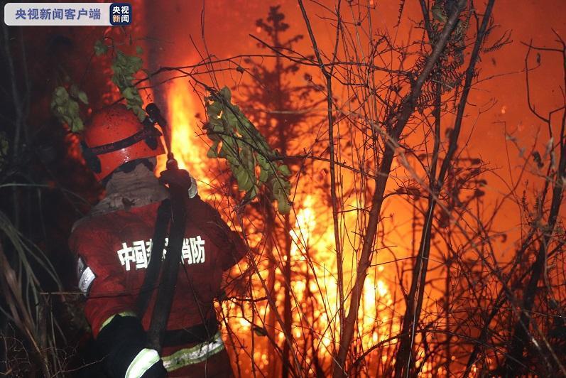 福建大田森林火灾已全面扑灭 初步调查结果公布