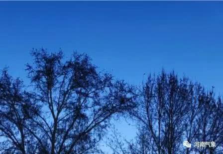 最低-5℃!未来三天河南气温明显下降,这几地还有降雨