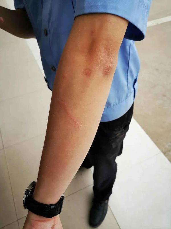 对民警拳打脚踢,还将警车坐垫咬烂,漯河一女子被刑拘