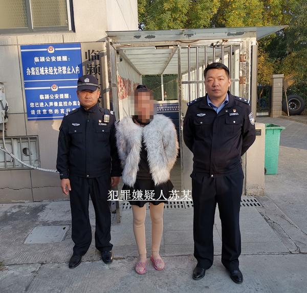 女子为泄私愤唆使朋友凌晨放火,漯河民警抓获两名嫌犯