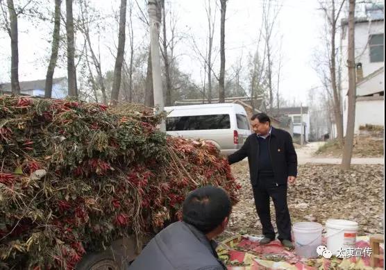 太康县委书记王国玺深入独塘等乡镇实地督导脱贫攻坚和人居环境综合整治工作