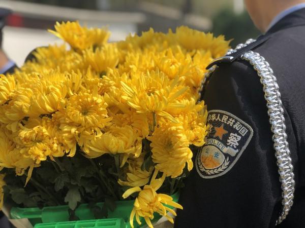 """清明将至,郑州警方组织""""祭英烈""""活动缅怀公安英雄"""