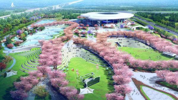 """534棵樱花树!郑州将新添一座""""网红公园""""!市民免费玩,它在哪儿?"""