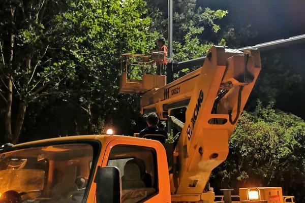 """营造安全出行环境!郑州对遮挡路灯、信号灯的5910株行道树进行""""整容"""""""