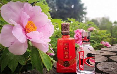 洛阳两大名片联袂演绎醉美牡丹文化节