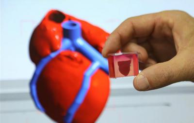 """研究人员称3D打印出全球首颗""""完整""""心脏"""