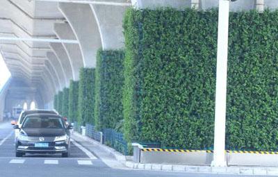 郑州高架桥下的迷你森林