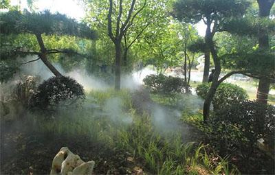 """铁栅栏""""消失"""",郑州紫荆山公园美得像仙境!"""