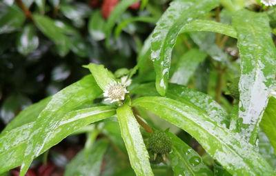 郑州今天仍有雨且越下越大!这些地方有暴雨!