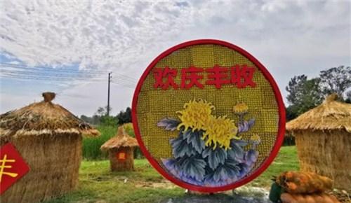 万众瞩目!今天,就在开封西姜寨共庆中国农民丰收节!